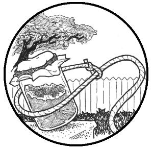 DIYeast-Lasso (icon)