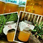 Wild Yeast Starter Jars