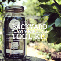 Backyard Yeast Wrangling Tool Kit