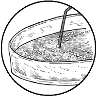 Isolating Yeast - Colony (icon)